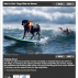 Best in Surf: Dogs Ride the Waves